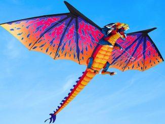10 Foot Wingspan Dragon Kite