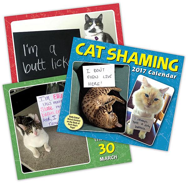 2017 Cat Shaming Daily Calendar