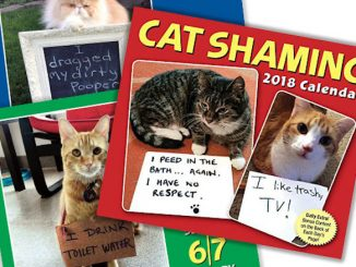 2018 Cat Shaming Desktop Calendar