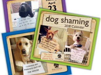 2018 Dog Shaming Wall Calendar