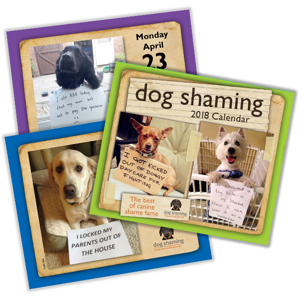 2018 Dog Shaming Wall Calendar