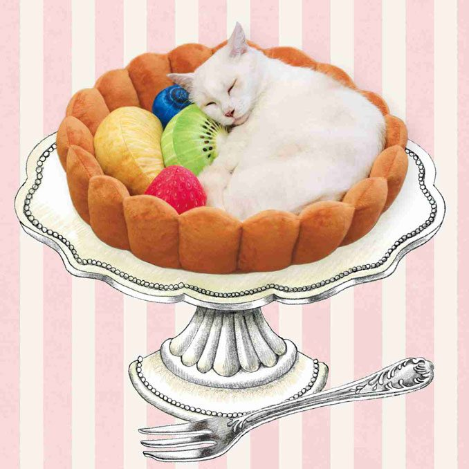 Adorable Fruit Tart Cat Bed