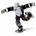 Advanced Acrobatic Robot