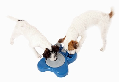 AiKiou Dog Bowl