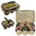 Alien Collectible Carton 7-Inch Scale Xenomorph Egg and Facehugger Set