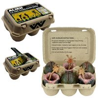 Alien Collectible Carton 7-Inch Scale Xenomorph Egg and Facehugger Set