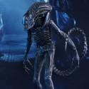 Alien Warrior Sixth-Scale Figure small