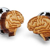 Anatomical Brain Stud Earrings