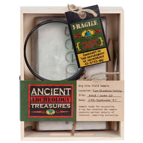 Ancient Treasures Archaeology Kit