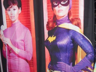 Batgirl Barbara Gordon Shower Curtain