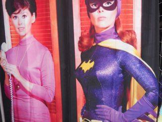 Batgirl Barbara Gordon Shower Curtain