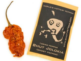 Bhut Jolokia - World's Hottest Pepper