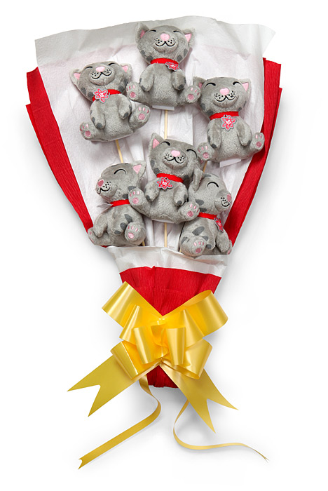Big Bang Theory Plush Soft Kitty Bouquet