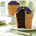 Blooming Flower Pot Cake