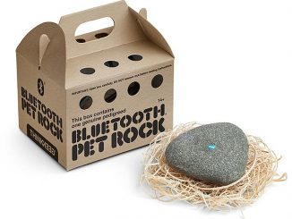 Bluetooth Pet Rock