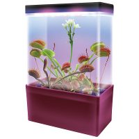 Carnivorous Creatures Light Cube