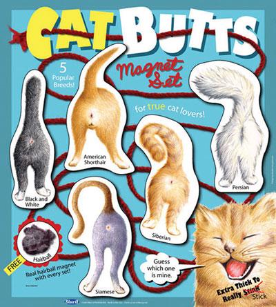 Cat Butts Magnet Set