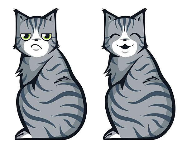 Cat Car Decals