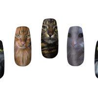 Cat Nail Wraps