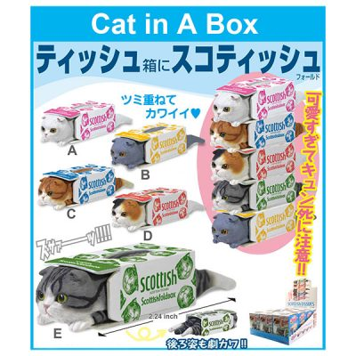 Cat in a Box of Tissues Blind Box