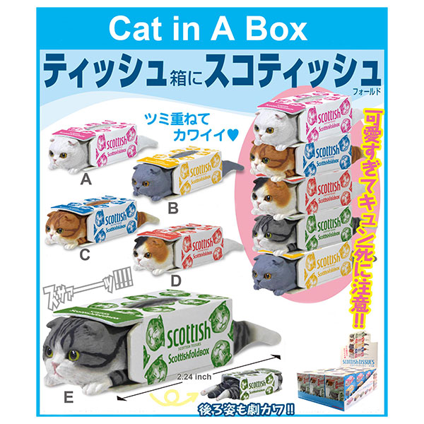 Blinds In A Box: Cat In A Box Of Tissues Blind Box