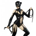 Catwoman Fantasy Figure Gallery DC Comics Collection Luis Royo Statue