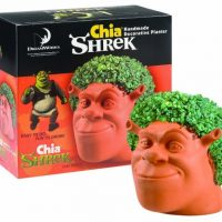 Chia Shrek