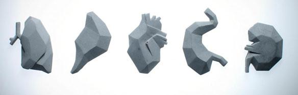 Concrete Organ Jewelry