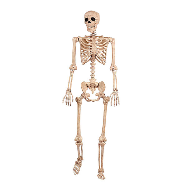 Crazy Bonez Pose n' Stay Skeleton