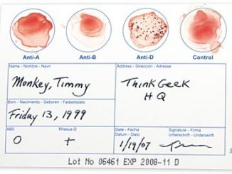 DIY Blood Typing Test Kit