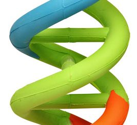 DNA Dog Toy