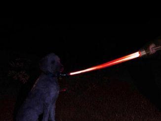 Darth Vader LED Lightsaber Dog Lead