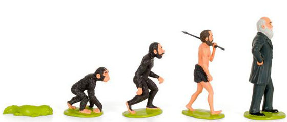 Darwin Play Set