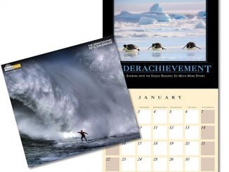 Despair, Inc. 2012 Custom Calendar