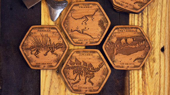 Dinosaur Fossil Coasters 2