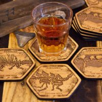 Dinosaur Fossil Coasters