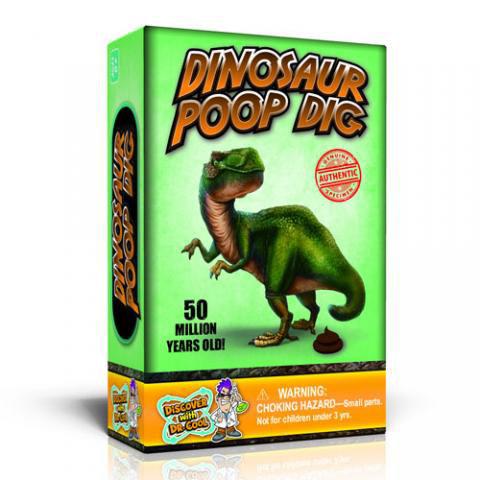 Dinosaur Poop Dig