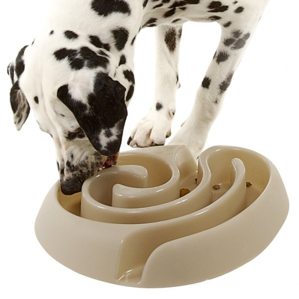 Dog Bowls For Dogs That Eat Too Fast