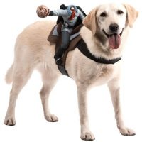 Dog Riders Headless Horseman Costume