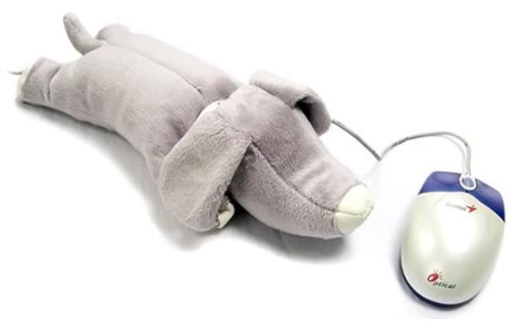Dog Wrist Support