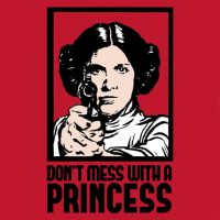 Don't Mess With a Princess Babydoll T-Shirt