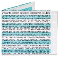 Dot Matrix Pi Mighty Wallet