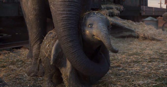 Dumbo Generations