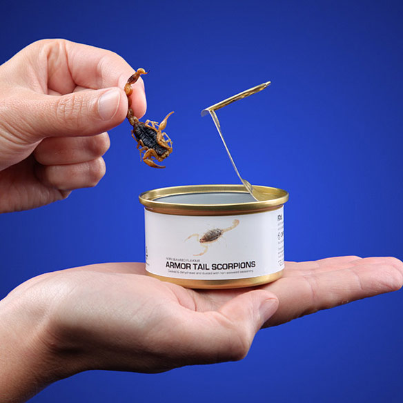 Edible Bugs Canned Food