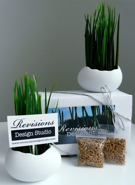 Egg Planters and Wheat Grass Kit