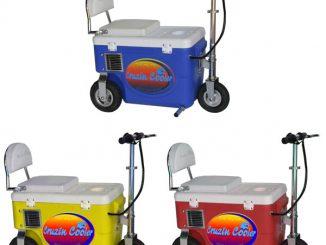 Electric Cruzin Cooler