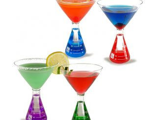 Erlenmeyer Flask Martini Glass Set