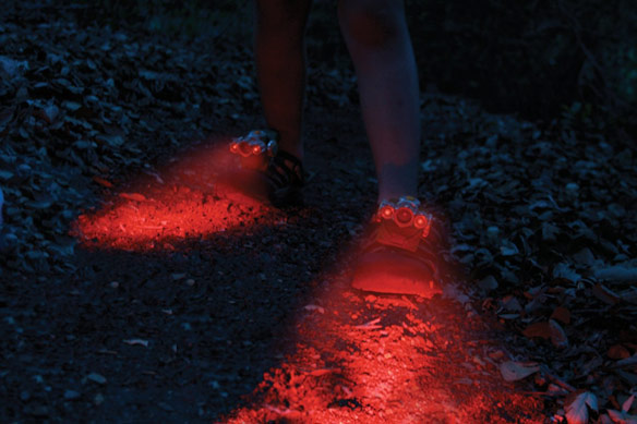 Expedition Shoe Lights
