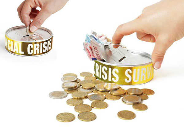 FINANCIAL CRISIS SURVIVAL KIT