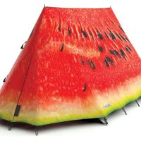 FieldCandy Tent What a Melon